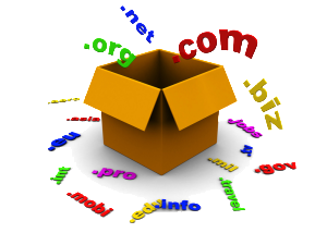 .net, .org, .info domain regisztráció